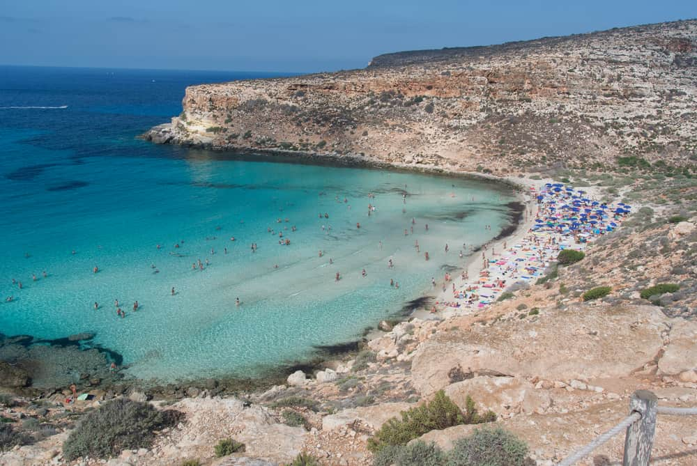 Lampedusa spiaggia conigli