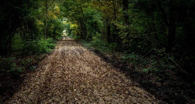 Cammini d'Italia: ecco i percorsi per chi ama viaggiare a piedi